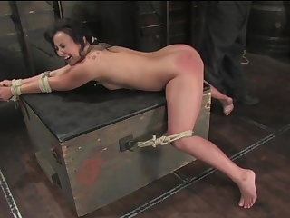 Whipping Bound, Ass Whipped & forced organism